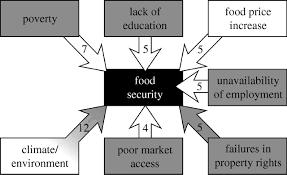 essay on food security in food security essay article speech essay on food security in gxart orgimportance of food security in essay essay topicsfigure