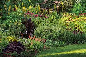 ilona bell cultivates a literary garden in the berkshires the hot border in summer