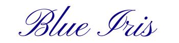 Blue <b>Iris</b> Florist in Grand Rapids - Blue <b>Iris</b>