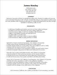 professional copywriter templates to showcase your talent    resume templates  copywriter
