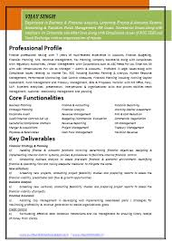 resume examples for experienced professionals  seangarrette coresume examples for experienced professionals professional cv sample