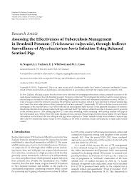 (PDF) Assessing the Effectiveness of Tuberculosis Management in ...