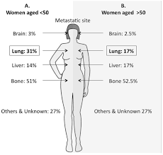 cancers full text effects of age on the detection and cancers 07 00815 g003 1024