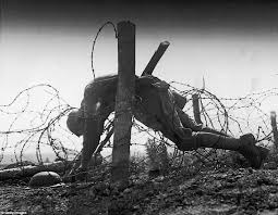Image result for images barbed wire world war I trenches