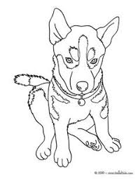 how to draw anime puppy anime pinterest anime Nv Homes Remington Place Floor Plan beautiful husky coloring page! nice dog drawing for kids more animals coloring pages on nv homes remington place ii floor plan