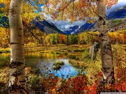 Image result for fall scenery pics