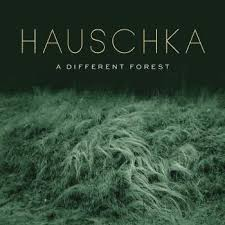 <b>Hauschka - A Different</b> Forest - LP – Rough Trade