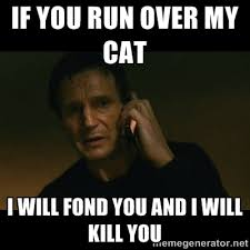 If you run over my cat I will fond you and I will kill you - liam ... via Relatably.com