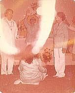 Resultado de imagem para umbanda raiz de guine