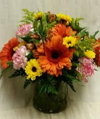 Cheerful <b>Orange gerbera</b> Daisies and More in Hampton Falls, NH ...