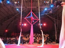 Sailor Circus on fabric