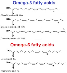 Image result for omega-3 structure