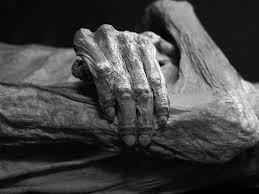 this is a first person analysis essay on the middle passage slave detail of the guanajuato mummies black and white version photo taken at