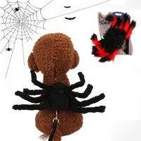 <b>Buy</b> Generic-<b>Dog</b> Leash with Spider <b>Pet Dog</b> Halloween <b>Costume</b> ...