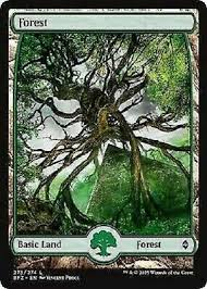 <b>2x 2 x Forest</b> 272 Full Art BASIC LAND Mint MTG Battle for Zendikar