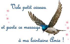 """Résultat de recherche d'images pour """"gifs petits oiseaux"""""""
