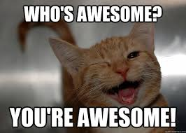 Who's awesome? You're awesome! - Cheer up Cat - quickmeme via Relatably.com