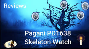 <b>Pagani Design</b> Skeleton watch Review. - video Dailymotion