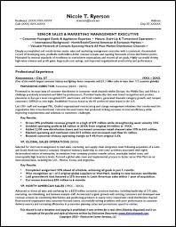 sales manager resume  amp  general manager resumesales manager resume sample page
