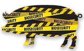 <b>New</b> vehicle <b>pre</b>-<b>loading</b> biosecurity risk guide - Department of ...