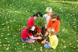 Image result for remove ego plant a tree