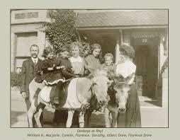 Dorothy Jean Drew married Simon James Ekins on 14-12-1963 and had 1 child David Carl Ekins who married Carolyn Ann Hyland 15-3-1986 - donkeys%2520at%2520Rhyl