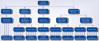 organisational structure   developing an effective organisational    developing an effective organisational structure  a syngenta case study