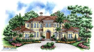 Tropical home plan  Tropical House plan   Weber Design Group    Tuscany II House Plan Tropical Home Plans