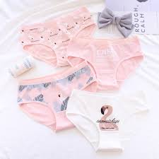 Online Shop New 4pcs Teenage Flamingos <b>Underpants</b> Young <b>Girl</b> ...