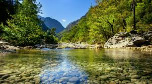 Image result for nature mountains green