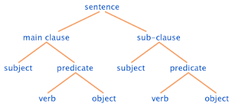 dutch linguistics  syntax   word orderdiagram