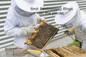 <b>Top</b> 60 <b>Beekeeping</b> Blogs And Websites For Beekeepers To Follow ...