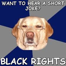 WANT TO HEAR A SHORT JOKE? Black rights (Racist Dog) | Meme share via Relatably.com