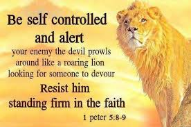 Image result for 1 Peter 1:19