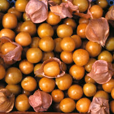 Image result for Golden berry