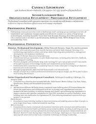 business resume format getessay biz 10 images of business resume format