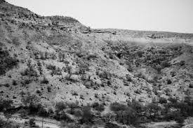 dushkal drought in marathwada photo essay by harsha vadlamani marathwada 23 2016 dead trees dot the hills near dharur in beed maharashtra