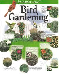 bird gardening gardengal bevy image