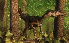 New Fossil Reveals Velociraptor Sported <b>Feathers</b> - Scientific ...