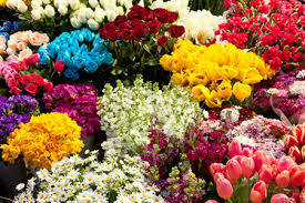 Рейтинг <b>удобрений для срезанных</b> цветов | Fertilizer Daily