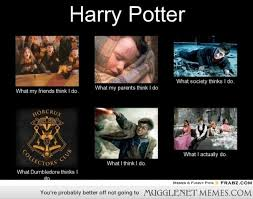 Image result for Mugglenet