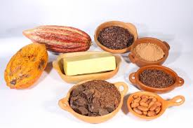 Image result for cacao bean