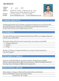 doc format of cv free  seangarrette cocurriculum vitae resume template example for computer operator with work experience
