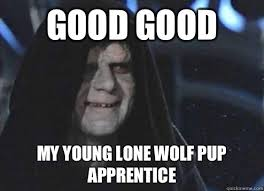 Good Good My young lone wolf pup apprentice - Emperor Palpatine ... via Relatably.com