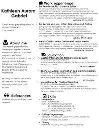 curriculum vitae kathleen gabriel curriculum vitae
