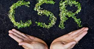 understanding the concepts of corporate social responsibility csr understanding the concepts of corporate social responsibility csr corporate citizenship the document co
