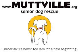 bake to benefit muttville senior dog rescue chef mara friends muttville logo lightbackgrounds