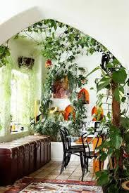 indoor plants brisbane office plants