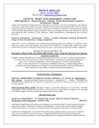 analytical skills resume getessay biz analytical skills analytical skills