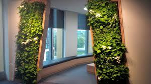 livingwalls living walls elt easy green